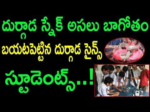 దుర్గాడ స్నేక్ అసలుబాగోతం బయటపెట్టిన స్టూడెంట్స్ | Exposure On Durgada Snake Death Mystery | SumanTV