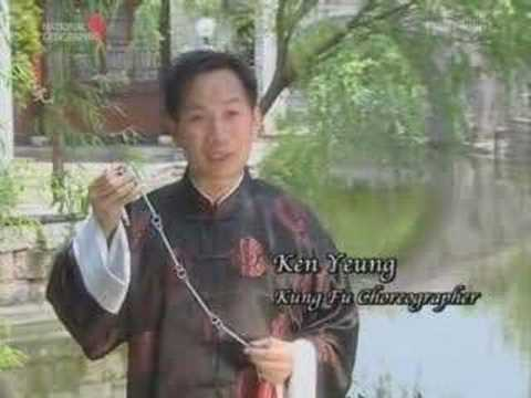 Kung Fu Weapons - Nine Section Whip Image 1