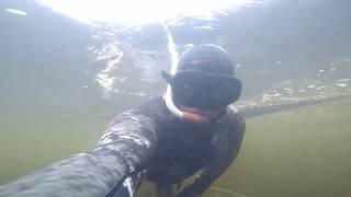 Подводная охота 2018