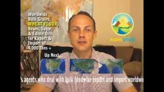 Wheat Flour Trade, Wheat Flour Trade, Wheat Flour Trade, Wheat Flour Trade, Wheat Flour Trade...