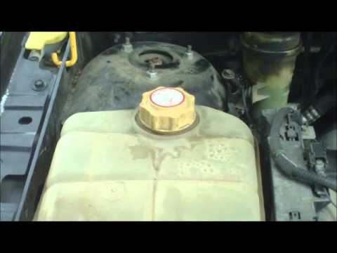 Coolant Flush (Ford Focus)