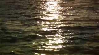 """Allah-Las - """"Worship The Sun"""" (Official Video)"""