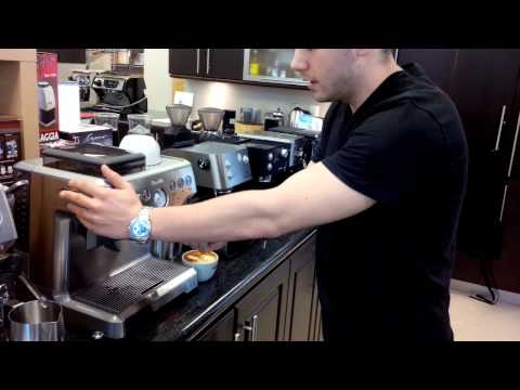 Breville Barista Express Latte Demo and Latte Art