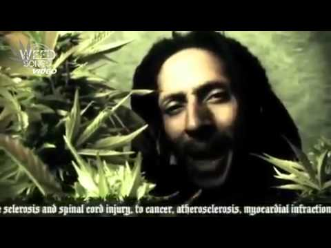 Weed Songs: Julian Marley - Boom Draw