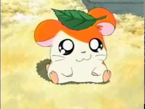 Hamtaro Opening german/deutsch