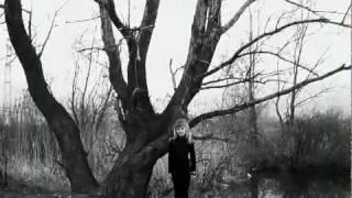 Watch Steven Wilson The 78 video