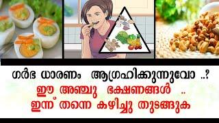 ഗര്ഭധാരണത്തിനു ശ്രമിക്കുന്നവരാണോ, ഈ  5 ഭക്ഷണങ്ങള്, നിര്ബന്ധം  | 5 Foods must Eat  to Get Pregnant