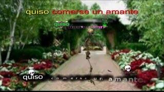 LA MISERIA HUMANA - Lisandro Meza - VIDEO - Karaoke - Letra - Poesía -Green screen, Aegisub CC