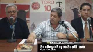 TORO TENDIDO 10 (28.10.14)