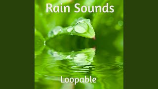 White Noise Rain For Studying Loopable
