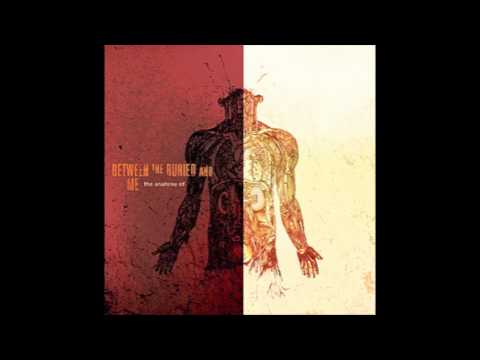 Between The Buried And Me - Little 15