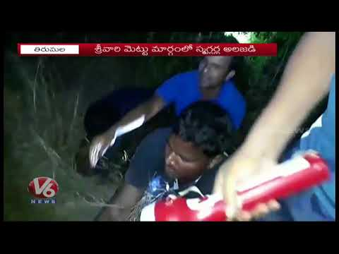 Task Force Police Constable Injured While Combing Operation In Tirumala | V6 News