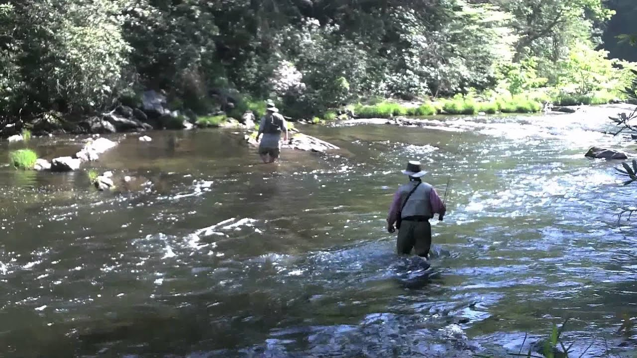 Fly fishing the chattooga youtube for Georgia out of state fishing license