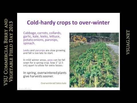 Pam Dawling - Planning Fall vegetables