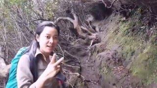 download lagu Pendakian Gunung Kerinci 3805 Mdpl 2-3 Okt 2015 gratis