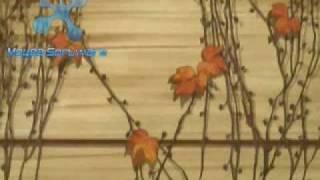 Vídeo 33 de Nellie McKay