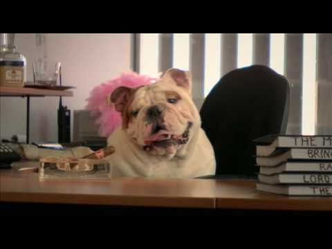 Watch Porndogs: The Adventures of Sadie (2009) Online Free Putlocker