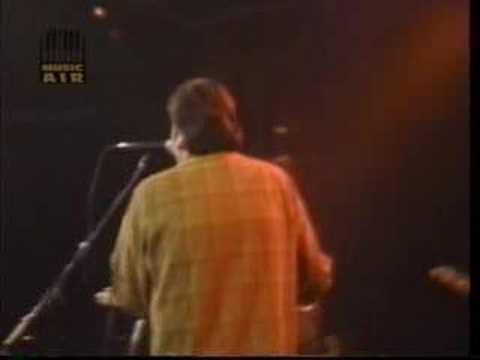 Los Lobos 'Our Last Night' 1985