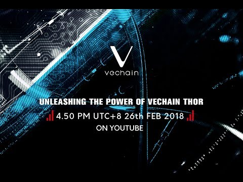 UNLEASHING THE POWER OF VECHAIN THOR