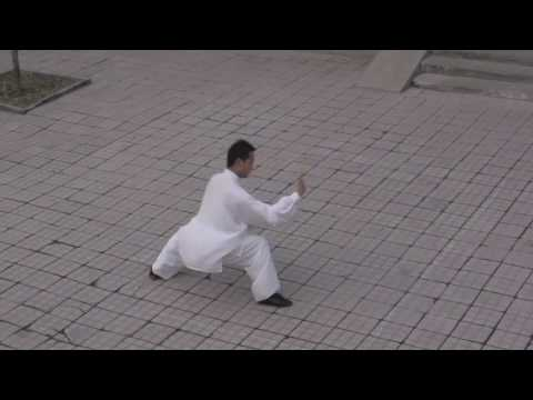 Real Taichi, Bagua and Xingyi :: Beijing Milun Kungfu School