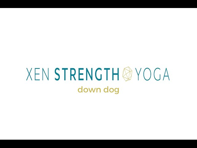 Beginner Alignment Instruction in  DOWNDOG (yoga with weights)