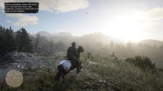 Red Dead Redemption 2 - RDR2 - HORSEMAN 10 CHALLENGE - WILD APPALOOSA - LOCATION - RARE HORSE