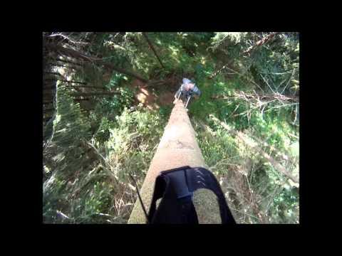 Odborná prax Sou lesnícke Modra Harmonia