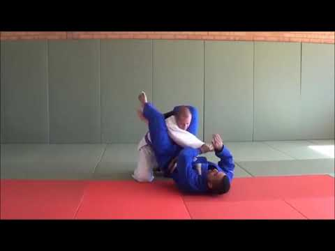 100 Really Cool Newaza techniques by Shak Image 1
