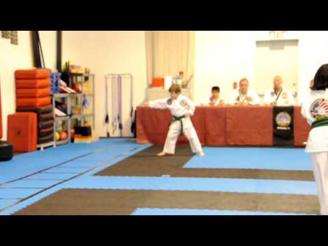 Liam TKD Test Testing for Green Senior