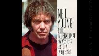 Neil Young Tour Last of a Dying Breed Live @ Austin Texas 1984 Full Album