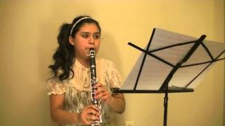 Little Things-One Direction (Clarinet Cover)