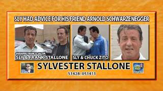 Sly Stallone Has Relationship Advice For Governator Arnold S1428