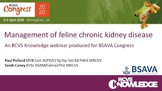Management of feline chronic kidney disease