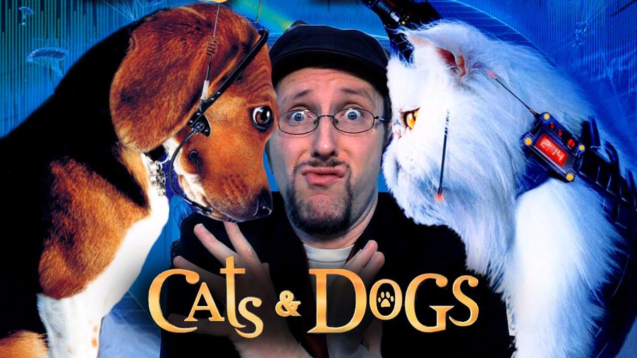 2 Stupid Dogs  Wikipedia