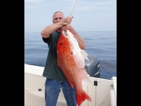 HUGE 20+ lb. Red Snapper! Independence Day Bottom Fishing Trip