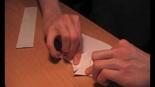 Origami Plane, World Record Plane