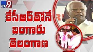 Minister Kadiyam Srihari about Telangana schemes    Warangal
