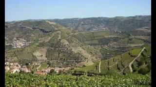アルト・ドウロ・ワイン生産地域