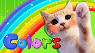 Rainbow Colors Song - Learn Colors | Nursery Rhymes & Kids Songs