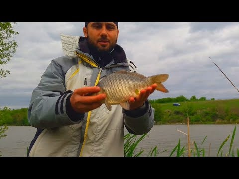 Рыбалка выходного дня. Ловля карпа на закидушку
