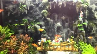 Hồ thủy sinh suối thác Tây Du Ký