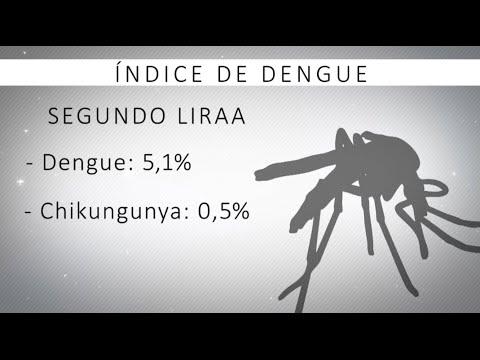 2º levantamento de indice de dengue e Febre Chikungunya aponta dados preocupantes em Divinópolis