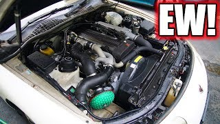 Cleaning a very dirty engine bay. Satisfying!