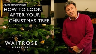 Alan Titchmarsh's Top Tips | Looking After Your Christmas Tree | Waitrose