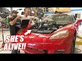The Auction Corvette's FIRST Fire Up w/Its THIRD Truck Engine! Preparing For an 8 Second Pass! thumbnail
