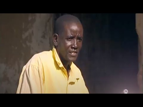 Shamba Shape Up (Swahili) - Cow Care, Chickens, Maize Thumbnail