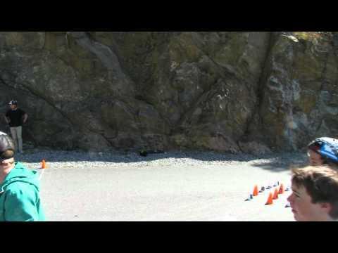 Longboard slide jam (PMS SlideBowl 3000)