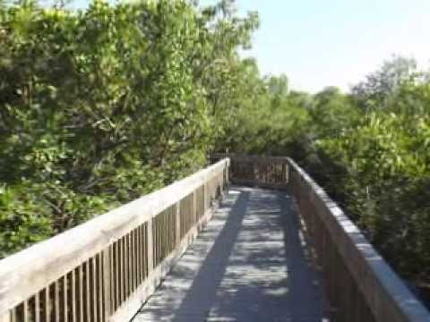 Bay View Boardwalk at Weedon Island Preserve