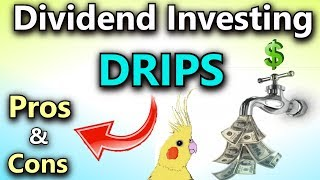 Dividend Investing: Pros and Cons of DRIPS (Dividend Reinvestment Plans)