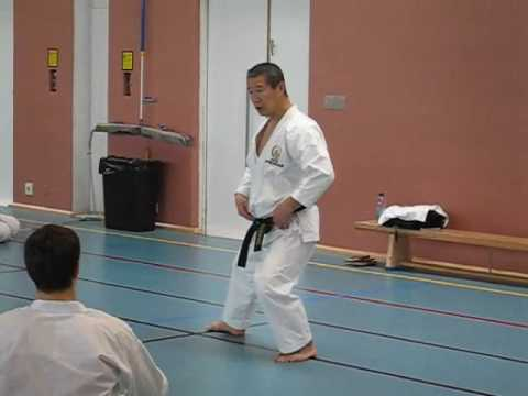 Kagawa-sensei Demonstrating Shifting From Kokutsu-dachi To Zenkutsu-dachi And Back video